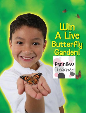 @InsectLore Butterfly Garden #Giveaway (X 11/22/13)