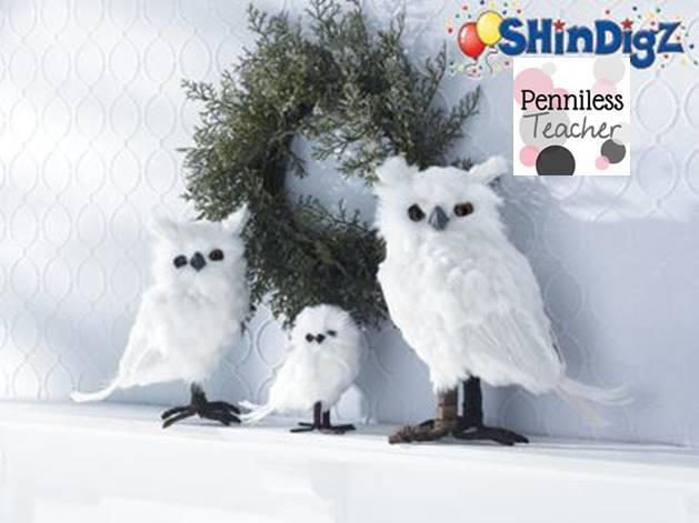 ShinDigzGiftCertificate11.5.13