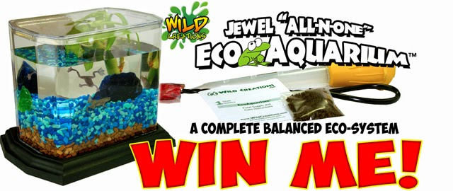 Wild Creatures Eco Aquarium #Giveaway (X 9/2/14)