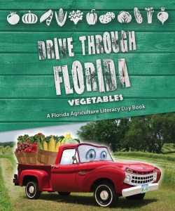 Florida State Fair Giveaway